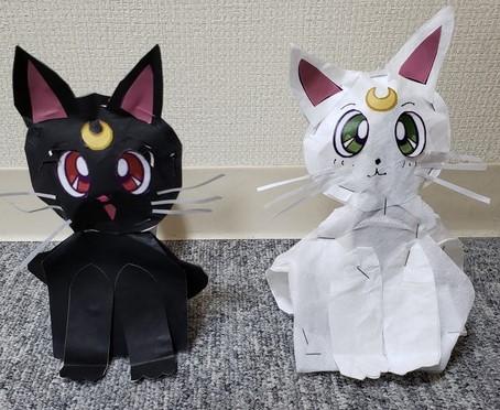 アイドル猫(ルナ& アルテミス)
